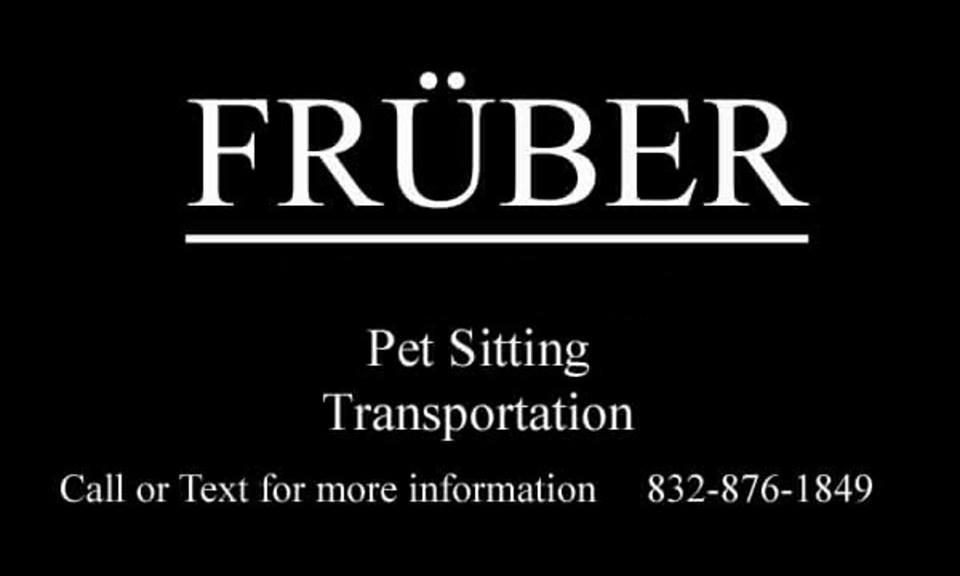 FruberServices.com